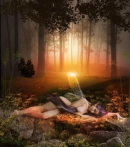 Fairy on the forest floor