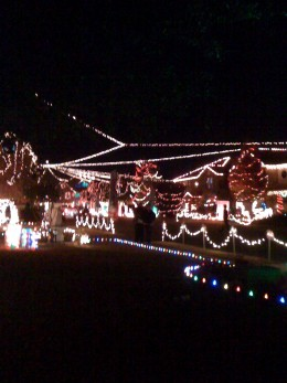 An entire cul-de-sac of Christmas decorations with a theme.