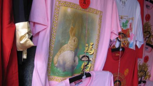 Chinese Year of the Rabbit - Too bad they didn't have my size