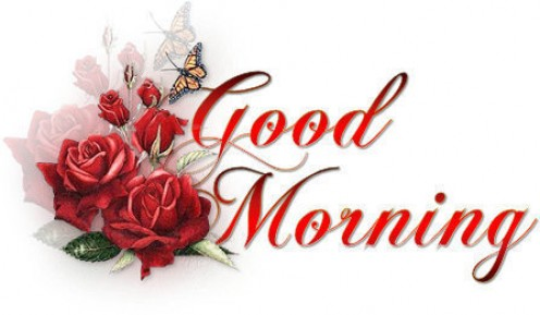 good morning quotes. good morning quotes to start