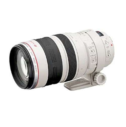 The Canon 100-400mm Lens - Ain't she a beauty?