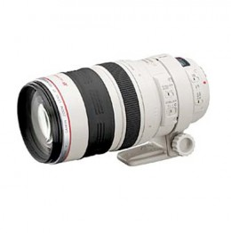 The Canon 100-400mm Lens - Ain't she a beauty?