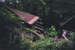 The collapsed roof of the old mll.