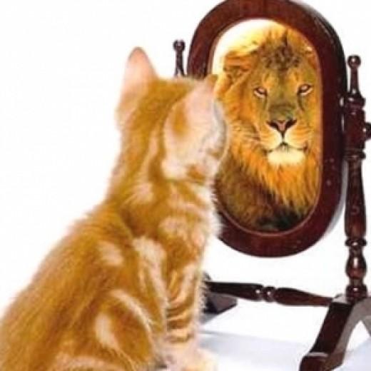 Men afraid of Losing his Self-Confidence