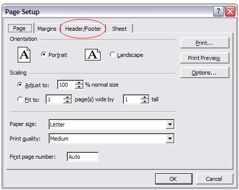 Under the File menu, click into the Page Setup menu, then Headers/Footers.