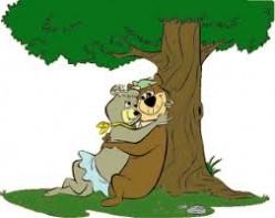 Yogi Yogi Bear