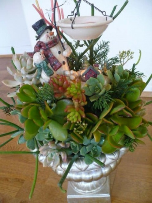 Succulents are long lasting....may the joy of Christmas last long after the season is over.