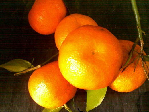 Ripe oranges are good source of water and fiber