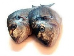 Is your source of omega 3 rotten for How to get rid of fish odor syndrome