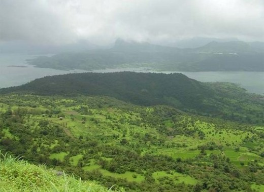 Silent Valley National Park in Kerala, India