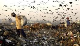 New Delhi Garbage Dump