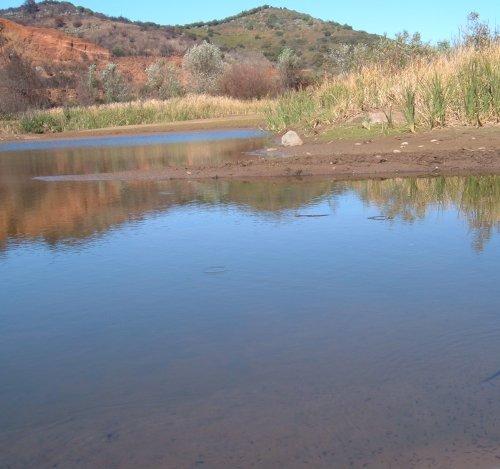 Erjos ponds Photo by Steve Andrews