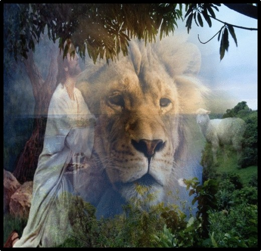 The strength and boldness of the lion and the gentleness of the lamb is discovered in our consecrated prayer times.