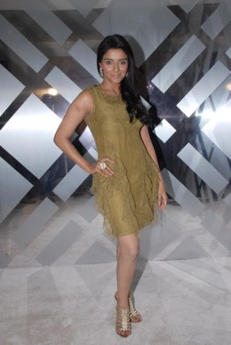 asin-aasin-hindi-tamil-telugu-mallu-bollywood-actress-hot-sexy-desi-indian-glamour-skinshow-revealing-exposing