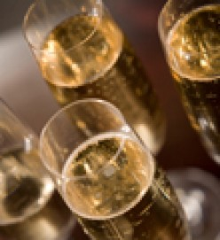 How to Choose the best Great Champagne for toasting in the New Year or any Special Occasion