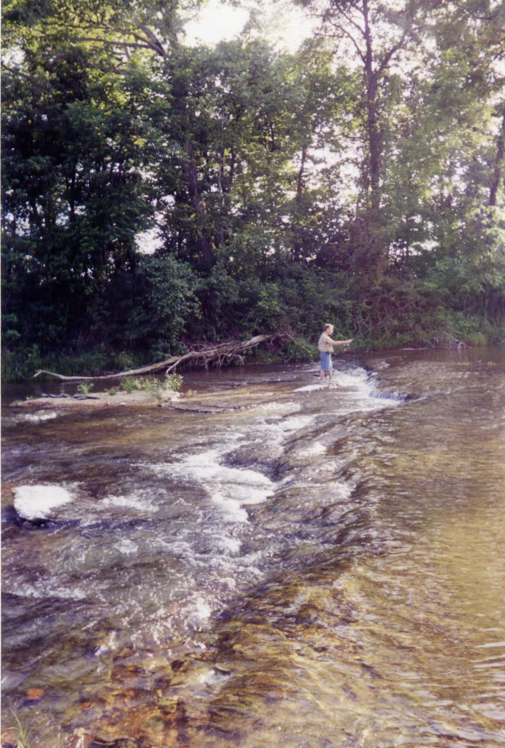 Fly fishing made easy in missouri for Fly fishing missouri