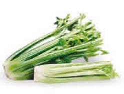 GOD'S FOOD: CELERY FOR HIGH BLOOD PRESSURE