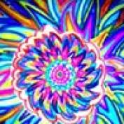 DiverBlog11 profile image