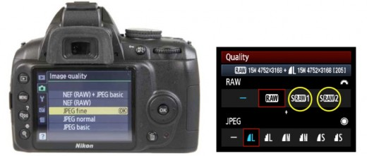 Nikon and Canon DSLR menus
