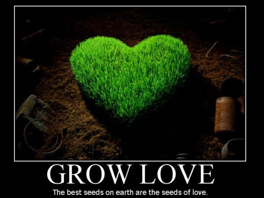 Grow Love in the New Year