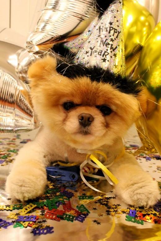 Happy New Year Boo