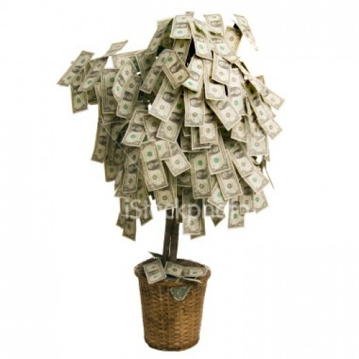 Grow Your Own Money Tree