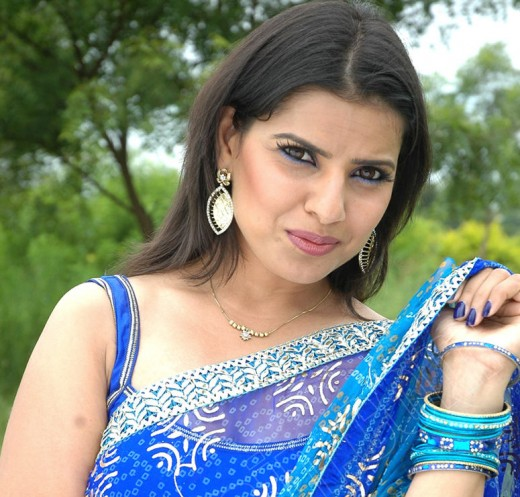 Madhu Sharma blue saree film