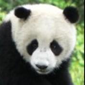 onetourchina profile image