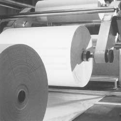 Mass Production of Paper