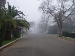 Too foggy, Lord