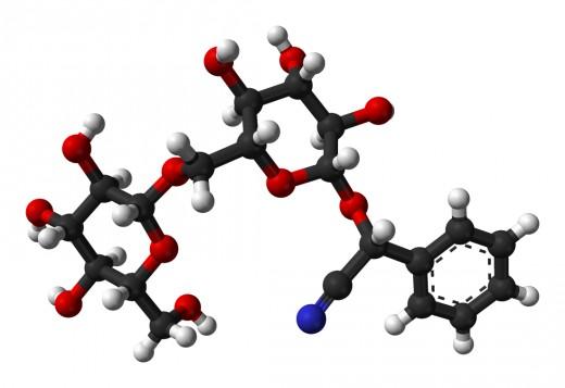 Amygdalin Structure