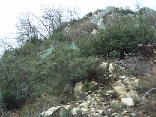View of the rocks and the bushes on the side of the cliff above Highway 18.