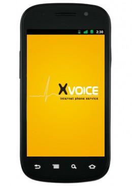 Axvoice Home Phone Service – The Prerequisites