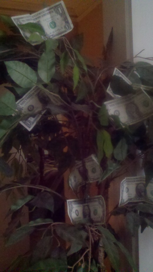 Money doesnt grow on.. hey wait!