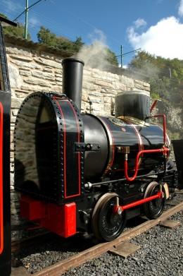 "19"" gauge Great Laxey Mines Railway locomotive 'Bee'   David Lloyd-Jones 2010"