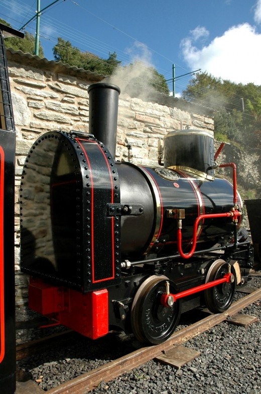 "19"" gauge Great Laxey Mines Railway locomotive 'Bee'   David Lloyd-Jones 2010"