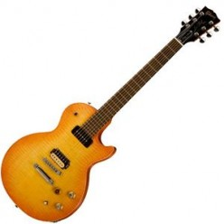 Review of the Gibson Les Paul signature guitar, Gary Moore Special model.