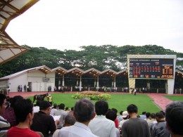 The Parade Ring