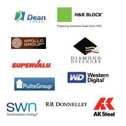 Worst Performer Stocks of S&P 500 index Logo - 2010