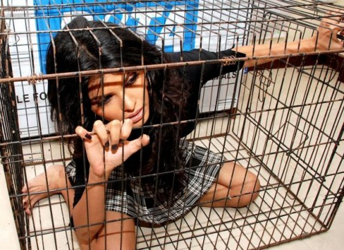 Sherlyn Chopra posing from inside of a cage