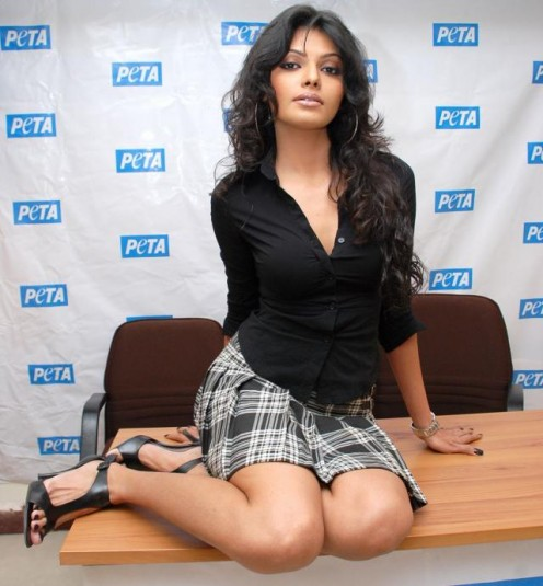 Interesting and Shocking Photoshoot of Bollywood Item Girl Caught in Cage Image 3