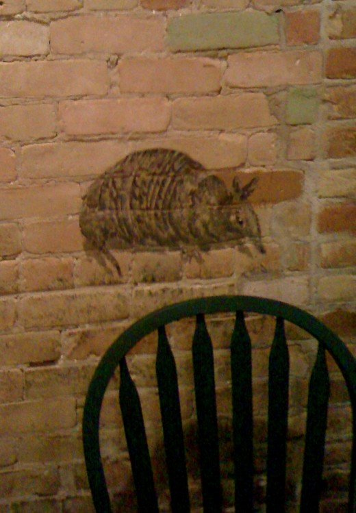 Armadillo painted on the wall.