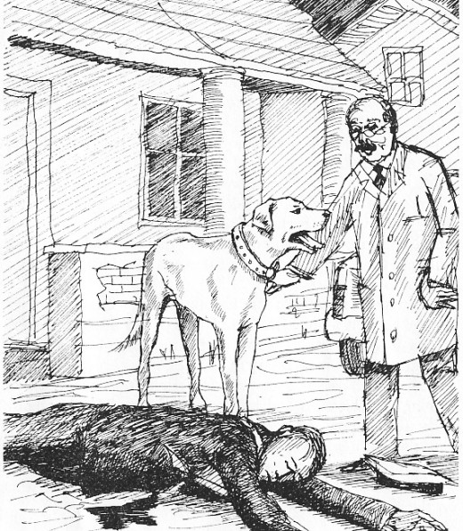 Illustration from the book Just Nuisance by Leslie Steyn