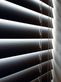 Beginners' Guide to the Window Blind