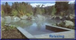 We used to go to Hamner Springs & enjoy the hotpools!