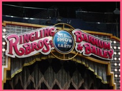 The Ringling Brothers Circus