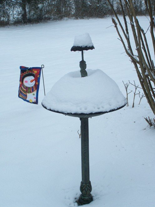 The birdbath looks a little different in the snow.