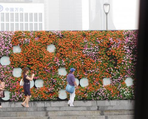 Garden wall at Bund Walk