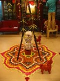 Pongal - The harvest festival of India