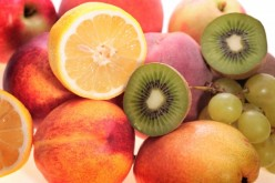 Best Foods For a Healthy Immune System
